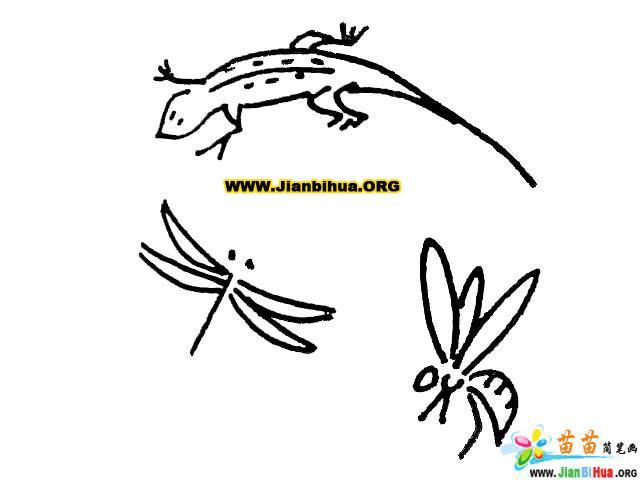 简笔画技法大全 蜻蜓大全7张 第7张