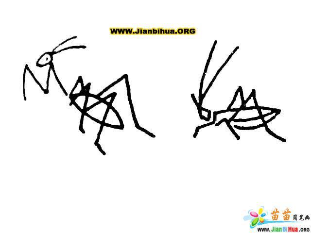 简笔画技法大全 蜻蜓大全7张 第6张