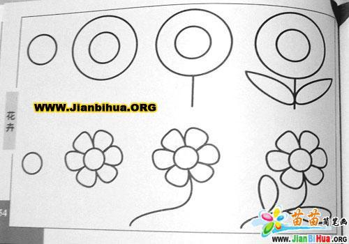 花卉简笔画图片6张