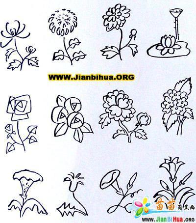 树与花简笔画的画法 第5张