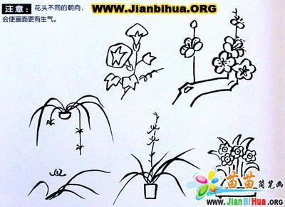 简笔画 林忠/类别:植物花卉简笔画图片张数:6张上传者:林忠校尺寸:...