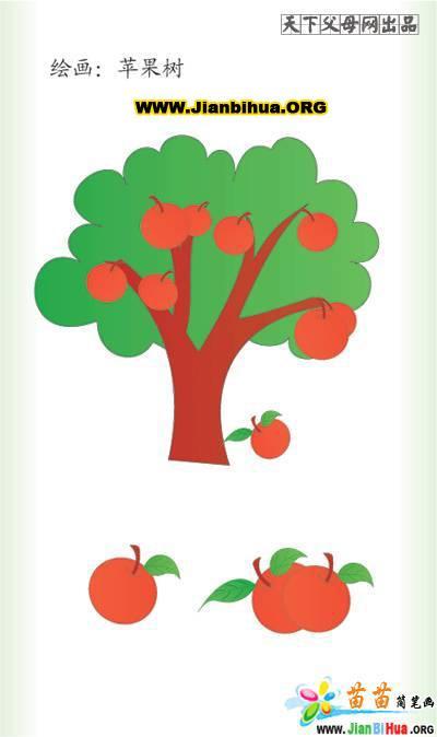 苹果树图片简笔画_一年四季苹果树的画画的素描_画画大全