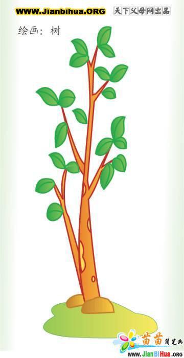 植物吃虫草简笔画_简笔画吃虫草_植物吃虫草图片