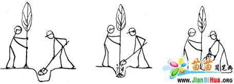 3张植树的简笔画图片 第3张