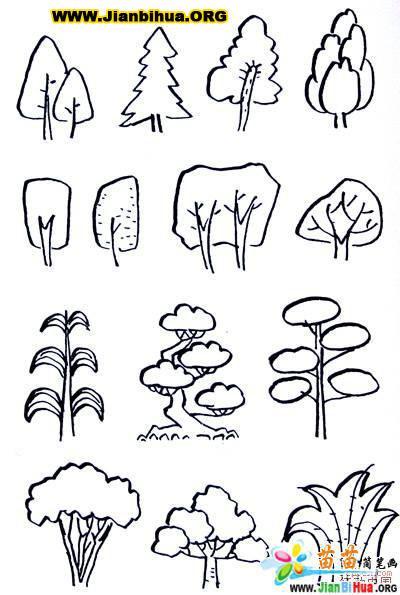 100种植物的简笔画图片 8张 第2张