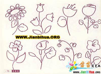 design 100种植物的简笔画图片8张第5张  小动物简笔画图片大全-100种