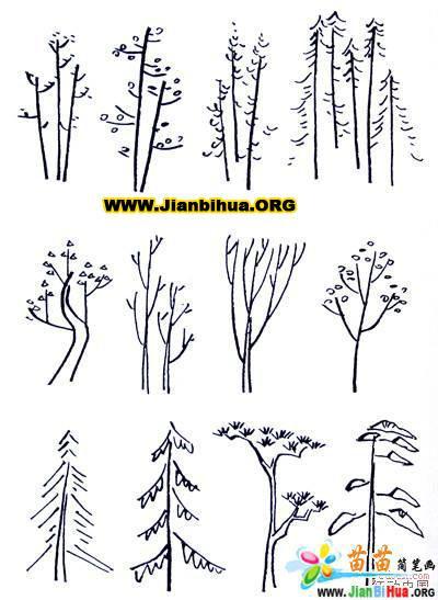 100种植物的简笔画图片(8张)