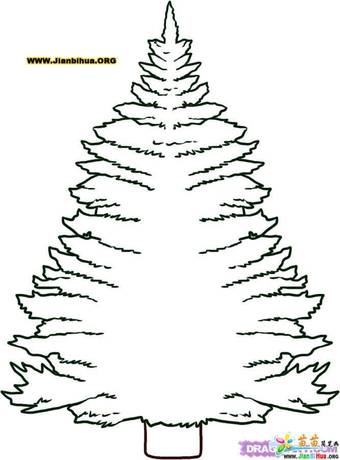 关于树的简笔画4张_幼儿简笔画_51自学网