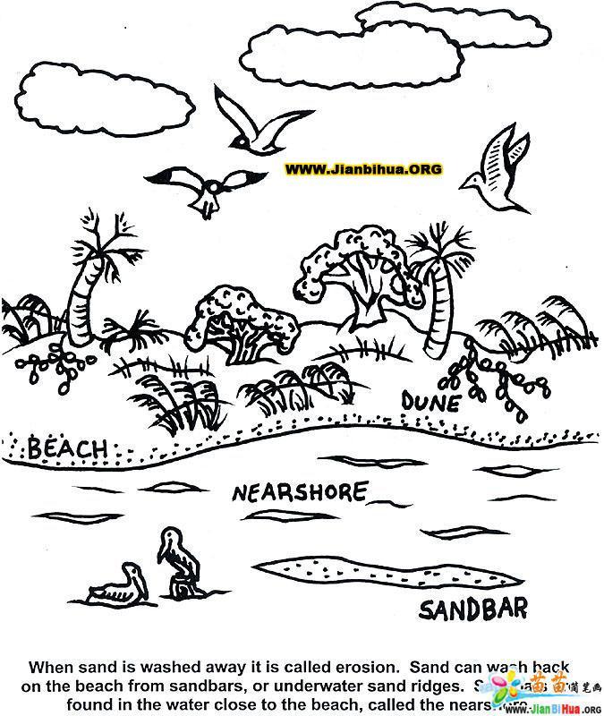 海洋风景简笔画19张(第11张)