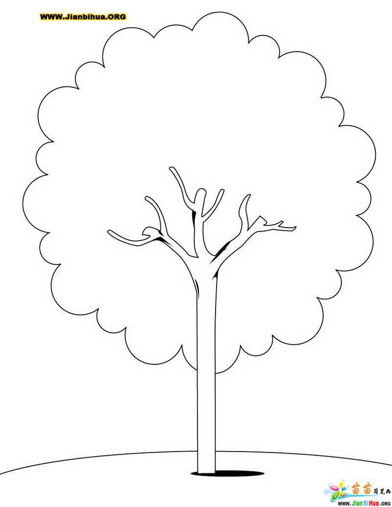 幼儿简笔画树