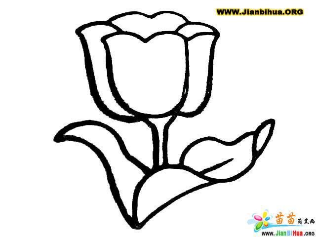 www.jianbihua.org 简笔确 www.jianbihua.org