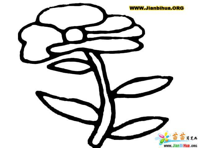 树简笔画 花的彩色简笔画12张 第10张