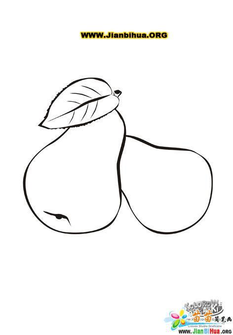 栗子可爱简笔画