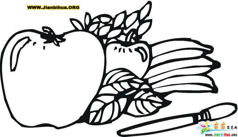 苹果的简笔画图 常见动物简笔画 常见花 简笔画 苹果的简笔画