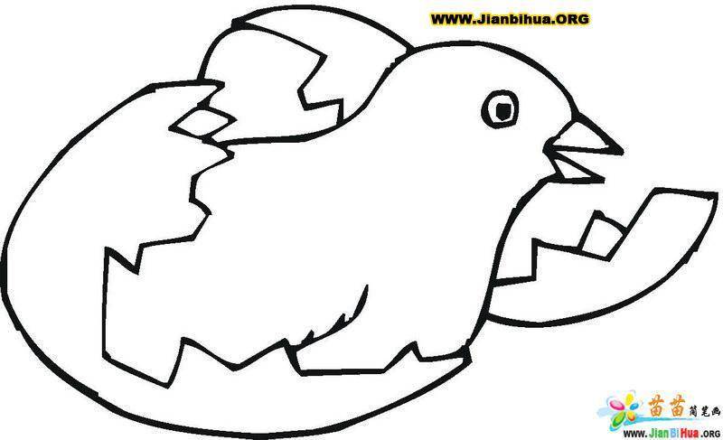 鸡蛋简笔画的画法(第9张)简介:该简笔画作品上传于2012-9-19,一共12张,首张简笔画图片格式为JPG,尺寸为580x756像素,大小为15 KB,由易县高陌乡西斗城小学万美芳上传。 本站推荐水果简笔画大全图片15张,女孩简笔画图片大全,中国筷子简笔画图片,轻便摩托车简笔画图片、画法,学生画画的简笔画图片,连衣裙简笔画图片(衣着篇),教师简笔画作品比赛讨论稿,希望你喜欢。
