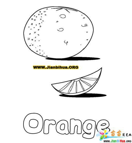 教你简单绘制桔子简笔画
