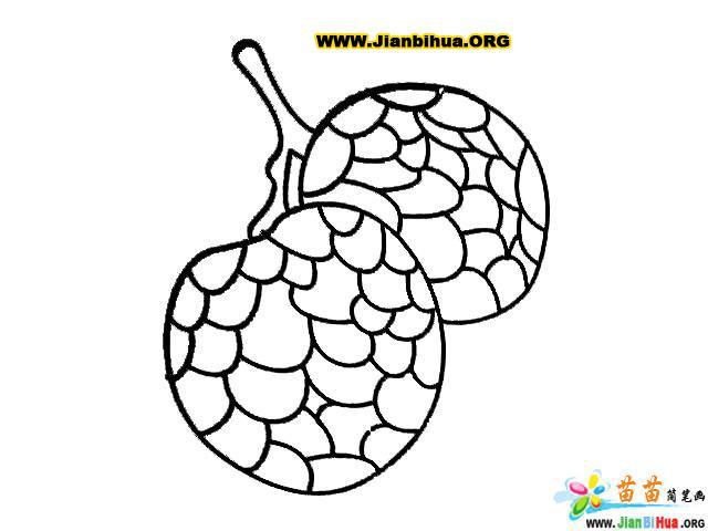 荔枝(铅笔画)简笔画的画法; 蔬菜铅笔画(简笔画); 简笔画画法;