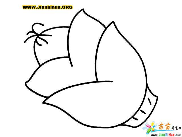 简笔画 韩祺祺/类别: 蔬菜简笔画 图片张数:2张上传者:韩祺祺尺寸:350...