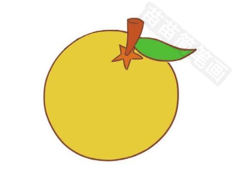 橙子简笔画图片大全 教程