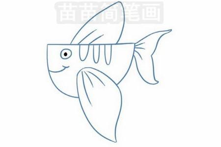 飞鱼简笔画图片步骤三