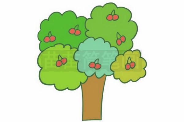 果树简笔画图片步骤五