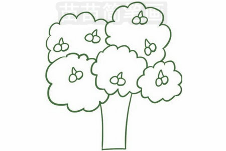 果树简笔画图片步骤四