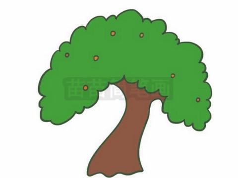 简笔画 风景简笔画 植物花卉简笔画 >> 正文内容   果树小知识:为了