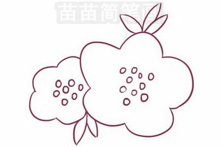 海棠简笔画图片步骤三