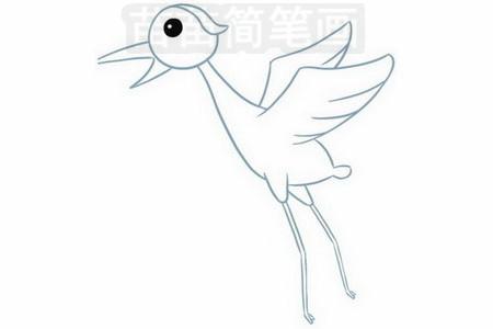 简笔画 动物简笔画 鸟类简笔画 >> 正文内容   飞鹤小知识:鹤分