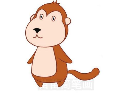 猴子简笔画彩色图片大全 教程