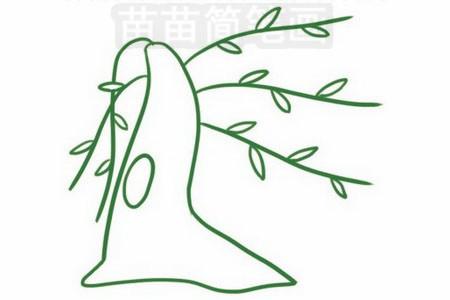 柳树简笔画图片大全 教程