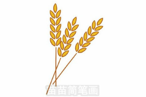 麦穗简笔画大图