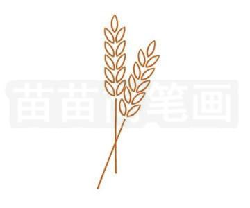 麦穗简笔画图片步骤二