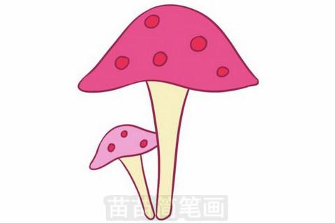 蘑菇简笔画大图