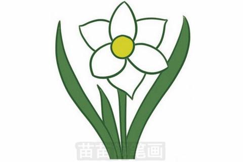 你提供 水仙简笔画图片大全,教程 水仙简笔画分步骤画法是:画出花朵