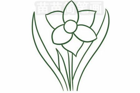 植物花卉简笔画 >> 正文内容   水仙简笔画分步骤画法是:画出花朵,画