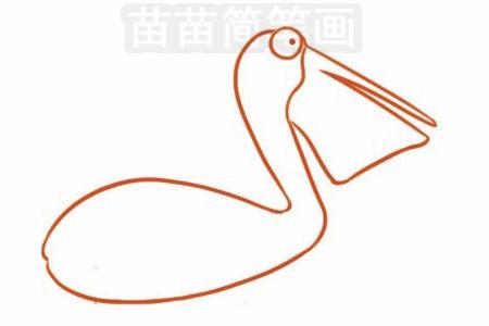 鹈鹕简笔画图片大全 画法