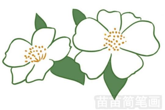 简笔画 风景简笔画 植物花卉简笔画 >> 正文内容   荼蘼小知识:唐朝之