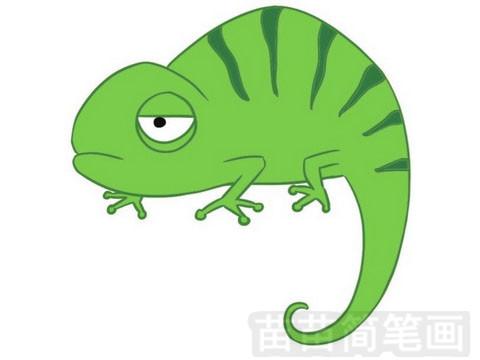 蜥蜴简笔画图片大全 画法