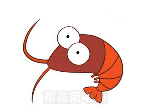 小虾简笔画图片大全 画法