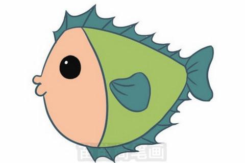 小鱼简笔画图片大全 教程