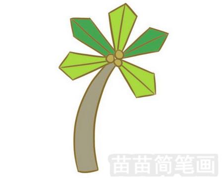 椰子树简笔画图片大全作品一