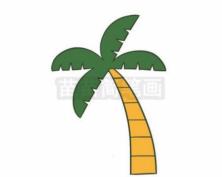 椰子树简笔画图片大全 教程