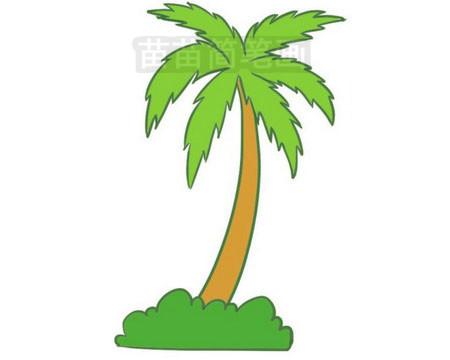 椰子树简笔画图片大全作品三
