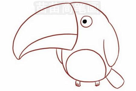 鹦鹉简笔画彩色图片大全 教程
