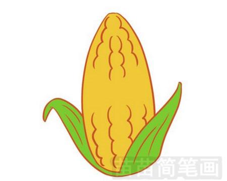 玉米简笔画图片大全作品一