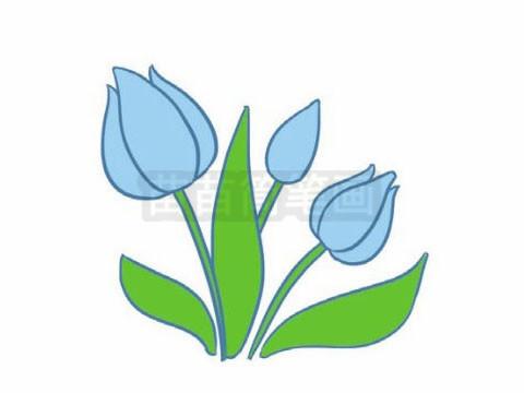 简笔画 风景简笔画 植物花卉简笔画 >> 正文内容   郁金香小知识:栽培