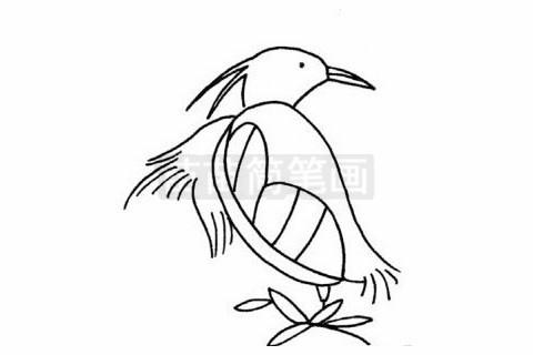 白鹭小知识:黄嘴白鹭的祖先出现于700万年前的中新世,现生的种群没有亚种分化,在国外见于俄罗斯、日本、朝鲜、菲律宾、马来西亚和印度尼西亚等地,在我国分布于河北、山西、内蒙古、辽宁、吉林、江苏、浙江、福建、台湾、山东、河南、广东、香港、海南等地,其中在辽宁、