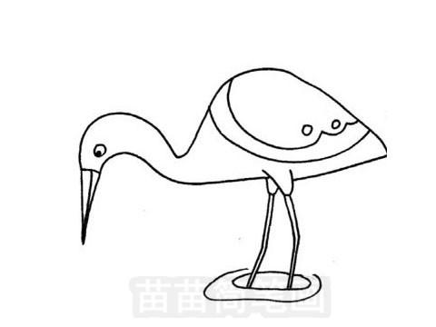 白鹭简笔画图片大全 教程