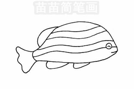 斑马鱼简笔画图片大全,教程